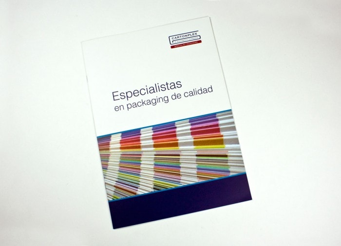 diseño grafico catálogo cartonplex